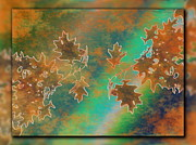 Tree Leaf Digital Art Posters - Branches In The Mist 3 Poster by Tim Allen