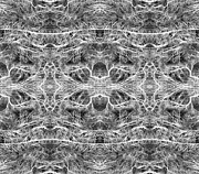 Branches Pattern Print by Florin Birjoveanu