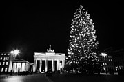 Berlin Germany Prints - Brandenburg gate and christmas tree in pariser platz at night Berlin Germany Print by Joe Fox