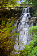 Brandywine Photos - Brandywine Falls of Cuyahoga Valley National Park waterfall water fall by Jon Holiday