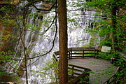 Painted Rocks Art - Brandywine Falls by Robert Harmon