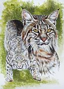 Bobcat Mixed Media Framed Prints - Brassy Framed Print by Barbara Keith