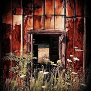 Rural Decay  Digital Art - Break on through to the other side... by Sharon Heyward