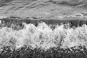 Horses Art Print Prints - Breaking Sea Wave - Black and White Print by Natalie Kinnear