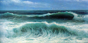 Sea Birds Prints - Breaking Waves Print by David James