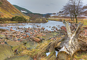 Breamish Valley Landscape Print by David Birchall