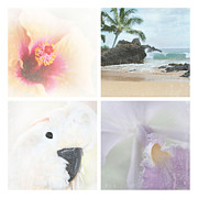 Epidendreae Prints - Breathe . feel the wind . . . Print by Sharon Mau