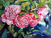 Camellia Paintings - Breathtaking Blossoms by Mohamed Hirji