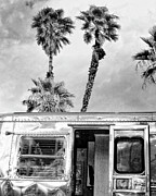 Airstream Prints - BREEZY BW Palm Springs Print by William Dey