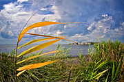 Barnegat Inlet Prints - Breezy Day on Long Beach Island Print by Mark Miller