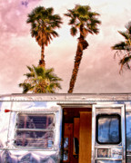 Airstream Prints - BREEZY Palm Springs Print by William Dey