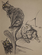 Cat Pastels - Brendas Three Cats by Jocelyn Paine