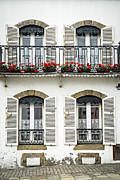 Wrought Iron Framed Prints - Breton house Framed Print by Elena Elisseeva
