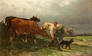 Breton Lad With Cattle Print by Julius Caesar Ibbetson