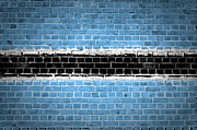 Old Wall Digital Art Prints - Brick Wall Botswana Print by Antony McAulay