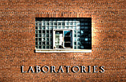 Toni Thomas - Brick Wall Laboratories