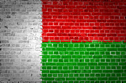 Stonewall Prints - Brick Wall Madagascar Print by Antony McAulay
