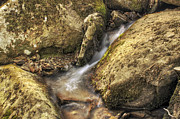 Heber Springs Prints - Bridal Veil Stream and Mossy Rocks - Heber Springs Arkansas Print by Jason Politte