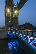 Svetlana Sewell - Bridge at night