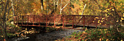 Chico Photo Framed Prints - Bridge On Big Chico Creek Framed Print by James Eddy