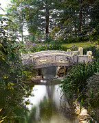 Mansion Photo Framed Prints - Bridge Over Stream Framed Print by Terry Reynoldson