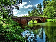Bass Bridge Prints - Bridge Over the Bass Pond Print by Carol R Montoya