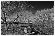 Monotone Prints - Bridge over the South Platte River Print by David Patterson