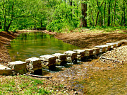 Natchez Trace Parkway Prints - Bridge Pilings across Colbert Creek at Mile 330 along Rock Spring Trail on Natchez Trace Parkway-AL Print by Ruth Hager