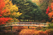 Shelton Framed Prints - Bridge to Autumn Framed Print by Karol  Livote