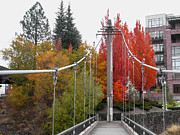 Spokane Posters - BRIDGE to FALL COLOR in SPOKANE Poster by Daniel Hagerman
