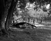 Wooden Bridges Photos - Bridge To Nowhere  2 by Mel Steinhauer