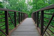 Bridging The Gap Print by Lisa  Phillips