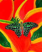 Debbie Chamberlin - Bright Butterfly 02