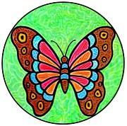 Jim Harris - Bright Butterfly