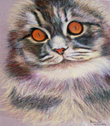 Featured Pastels Posters - Bright-Eyed Poster by Denise Wagner