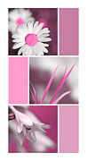 Bright Pink Prints - Bright Pink Flowers Collage Print by Christina Rollo