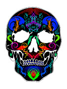 Scull Posters Framed Prints - Bright Scull Framed Print by Mauro Celotti