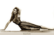 Brigitte Photos - Brigitte Bardot French actress sex symbols by California Views Mr Pat Hathaway Archives