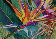 Terry Holliday - Brillant Bird of Paradise