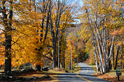 Brilliant Fall Colors And Country Road Near Marlboro Vermont Print by Robert Ford