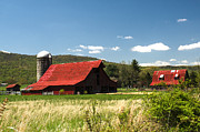 Tin Roof Prints - Brilliant Red Roofed Barn 1 Print by Douglas Barnett