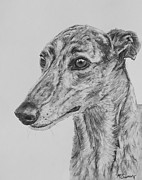 Skinny Drawings Prints - Brindle Greyhound Face in Profile Print by Kate Sumners