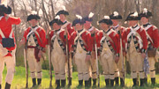 American Revolution Paintings - British Regiment by Colonial America