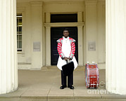 Drum Horse Photos - British Royal Guard Standing by Andrew Chittock