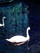 Lenore Senior and Constance Widen - British Swans