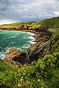 Brittany Photos - Brittany coast by Elena Elisseeva