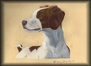 Vickie Sizemore - Brittany Spaniel