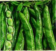 Broad Beans Print by Arual Jay