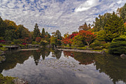 Japanese Garden Photos - Broad Skies and Fall Colors by Mike Reid