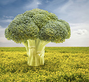Grow Digital Art - Broccoli Tree by Wim Lanclus
